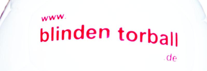 """Torball mit Schriftzug """"www.blindentorball.de"""" (Ausschnitt)"""