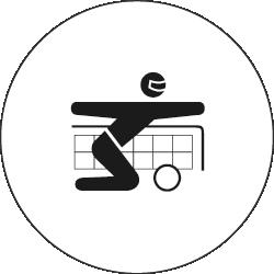 Piktogramm Torball groß